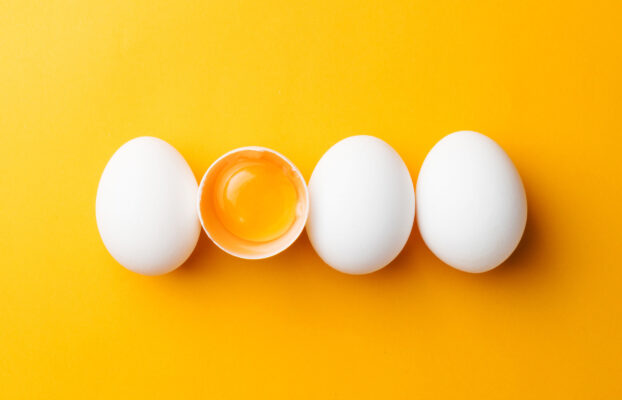 Purchasing Fresh Eggs for Your Food Business